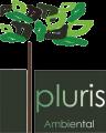 logo pluris format